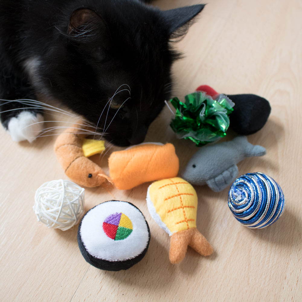 100% Free Cat Toy or Treat! - Limit one per household - SHIPS FREE! - BONUS: Grab your phone & Txt SECRETCAT to 88108 for access to secret deals!