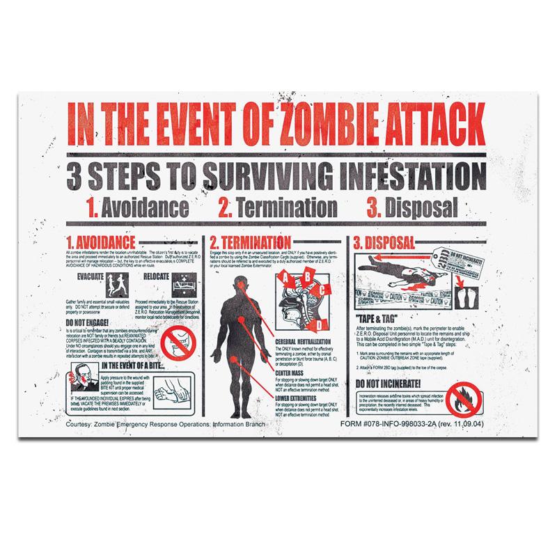 I Zombie Poster 24in x36in
