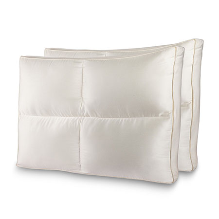 2 Pack of Queen Size Luxury Plush Allergy Resistant Fiber Filled Bedding Pillow with Hypoallergenic Cotton Shell - GREAT for Allergy Sufferers! Fill is designed to maintain fluffy shape and support! Comfortable and supportive for all - back, side, or stomach sleepers! - $50 at Bed Bath and Beyond! - ONLY $8.99 PER PILLOW FROM US! SHIPS FREE!