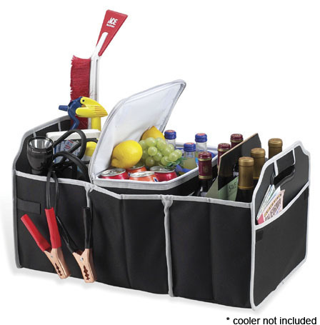 FREE Collapsible Trunk Organiz...